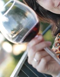 Oenologie, Connaître les vins pour mieux les vendre