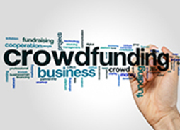 3 plateformes de crowdfunding partenaires : Wiseed, Proximea et My New Startup