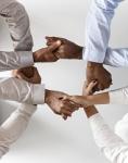 Développer le travail collaboratif pour élaborer, s'organiser et prendre des décisions