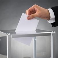 Elections CCI : les listes électorales consultables