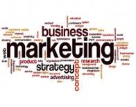 Marketing Entreprise Développement entreprises Développement commercial Conseil Compétences