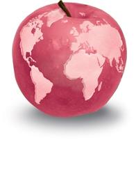 Réseaux Projet Environnement Entreprise Aide