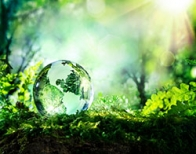Environnement Energie Développement entreprises
