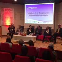Coopération-economique-Afrique-2017