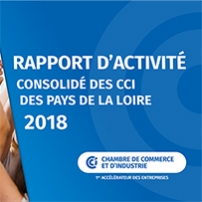 Rapport d'activité régional 2018