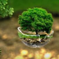 L'innovation peut-elle sauver la planète ?